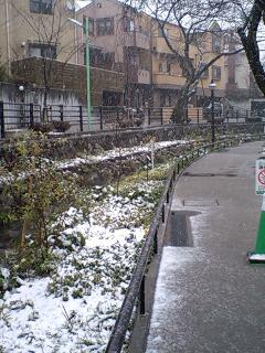 初日は雪化粧