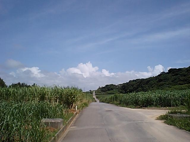 暑いぜ沖縄!